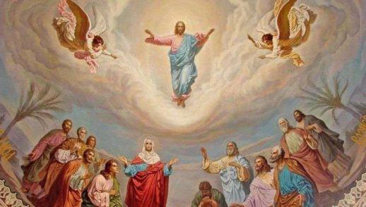 Homilía Ascensión del Señor a los cielos (24 de mayo de 2020)