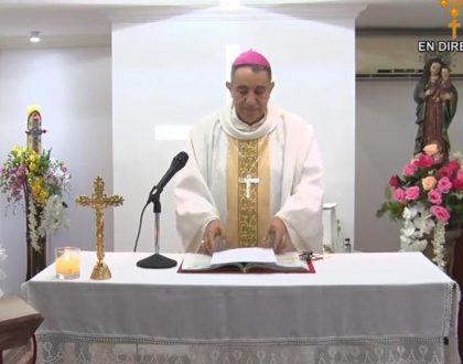 Homilía - miércoles de la VII semana de Pascua (27 de mayo de 2020)