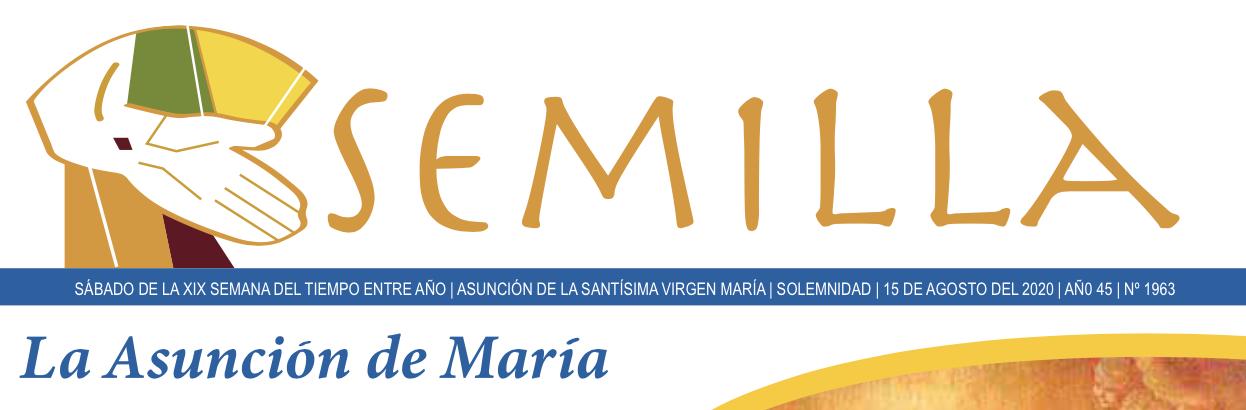 Semilla - 15 de agosto de 2020